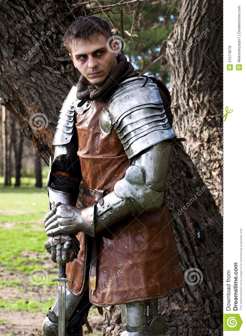 knight with the sword near the tree royalty free stock