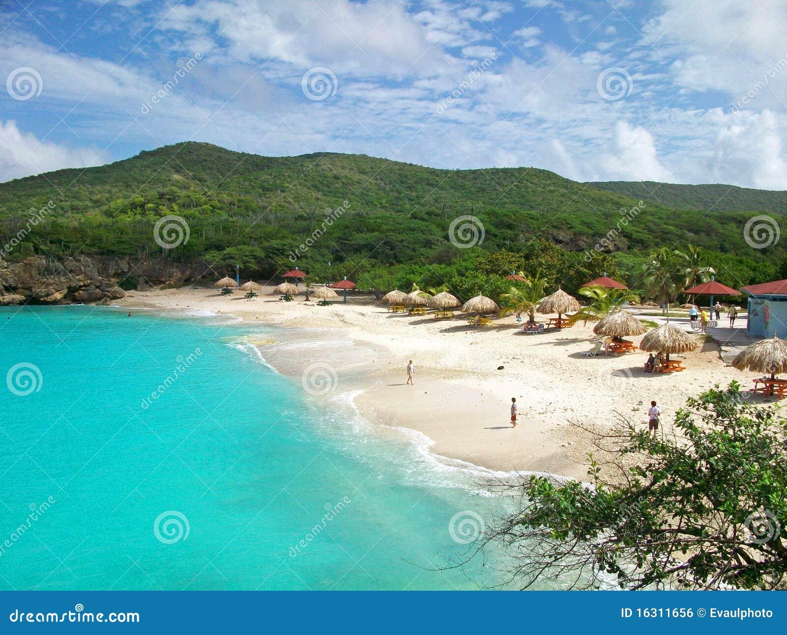 Knip curacao пляжа