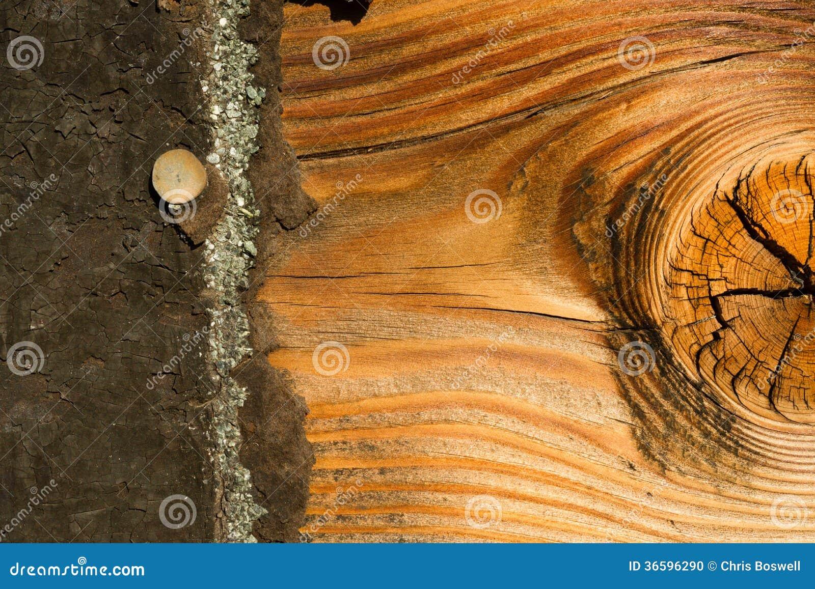 Knotty Pine Board Weathered Wood Asphalt Shingle Roofing