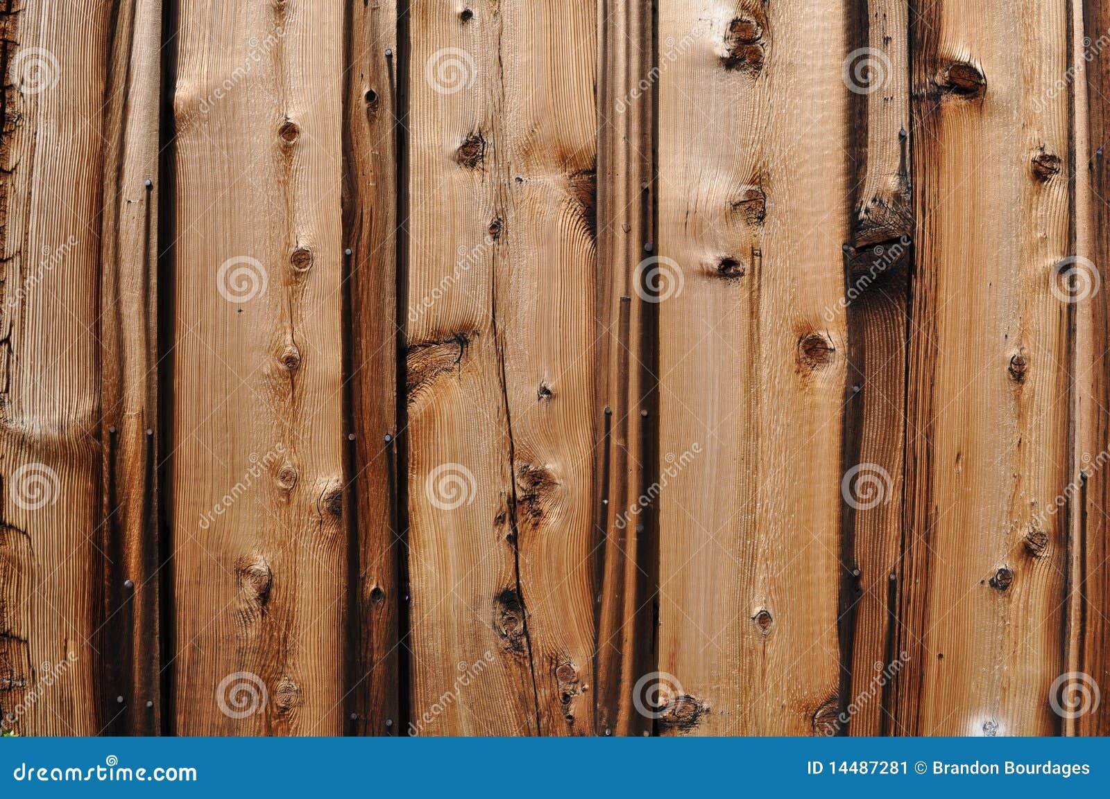 Knotty Pine Wood Background Stock Image Image 14487281