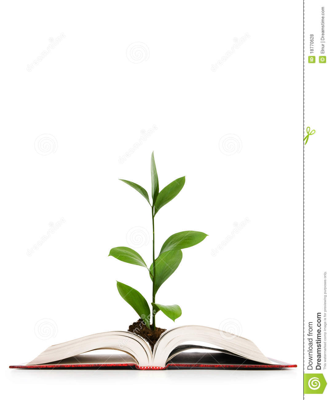 the tree of knowledge book pdf