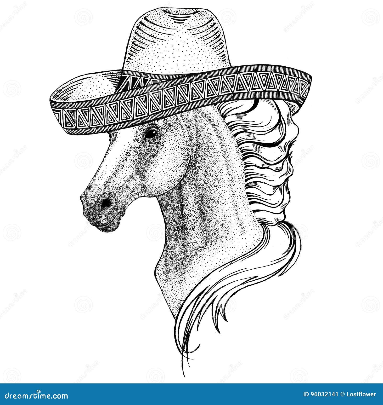 Koń, hossa, rycerz, rumak, courser dzikie zwierzę jest ubranym sombrero Meksyk fiesta meksykanina przyjęcia ilustracyjnego Dzikie