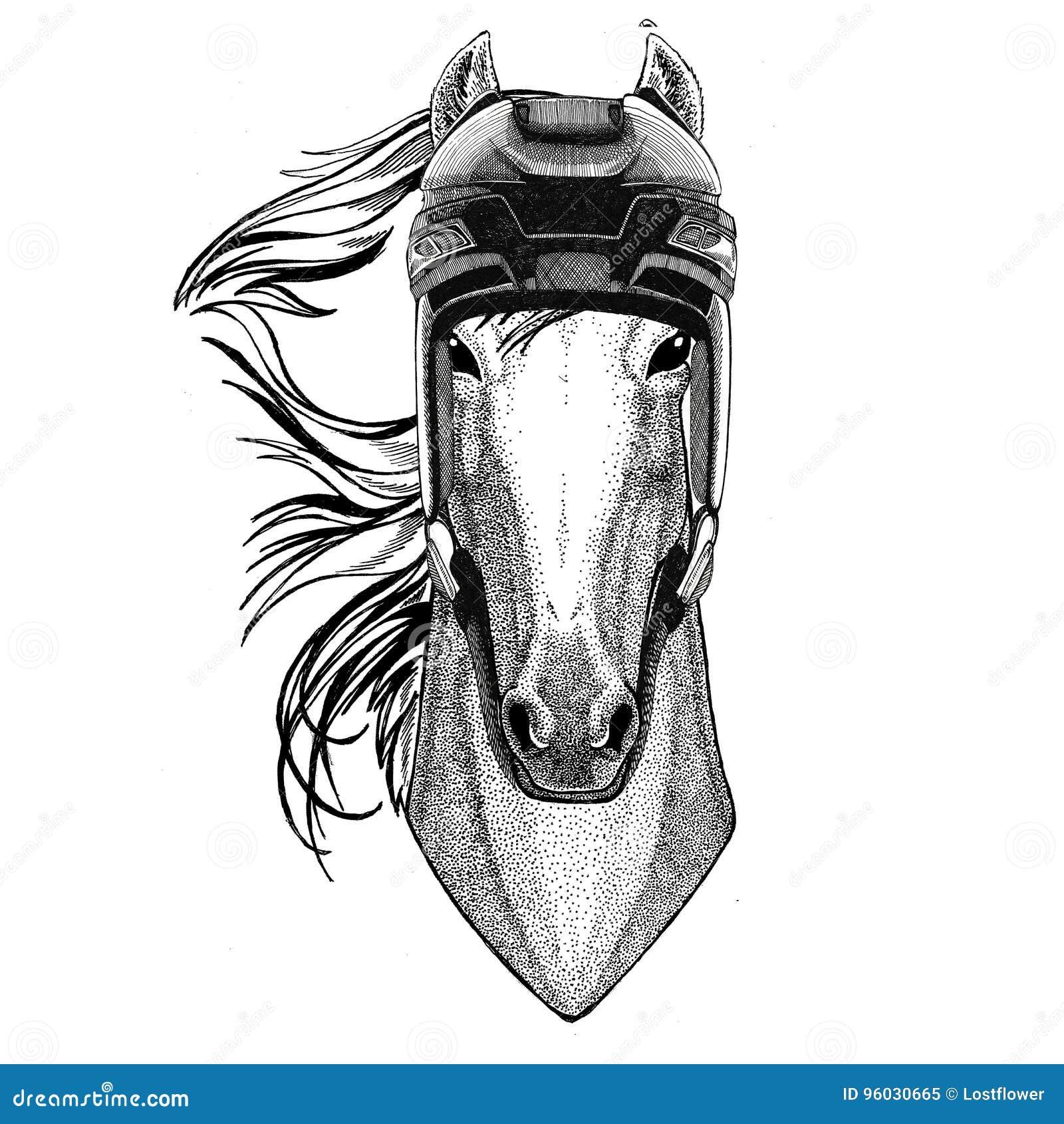 Koń, hossa, rycerz, rumak, courser wizerunku Hokejowy dzikie zwierzę jest ubranym hokejowego hełma sporta zimy sporta zwierzęcego
