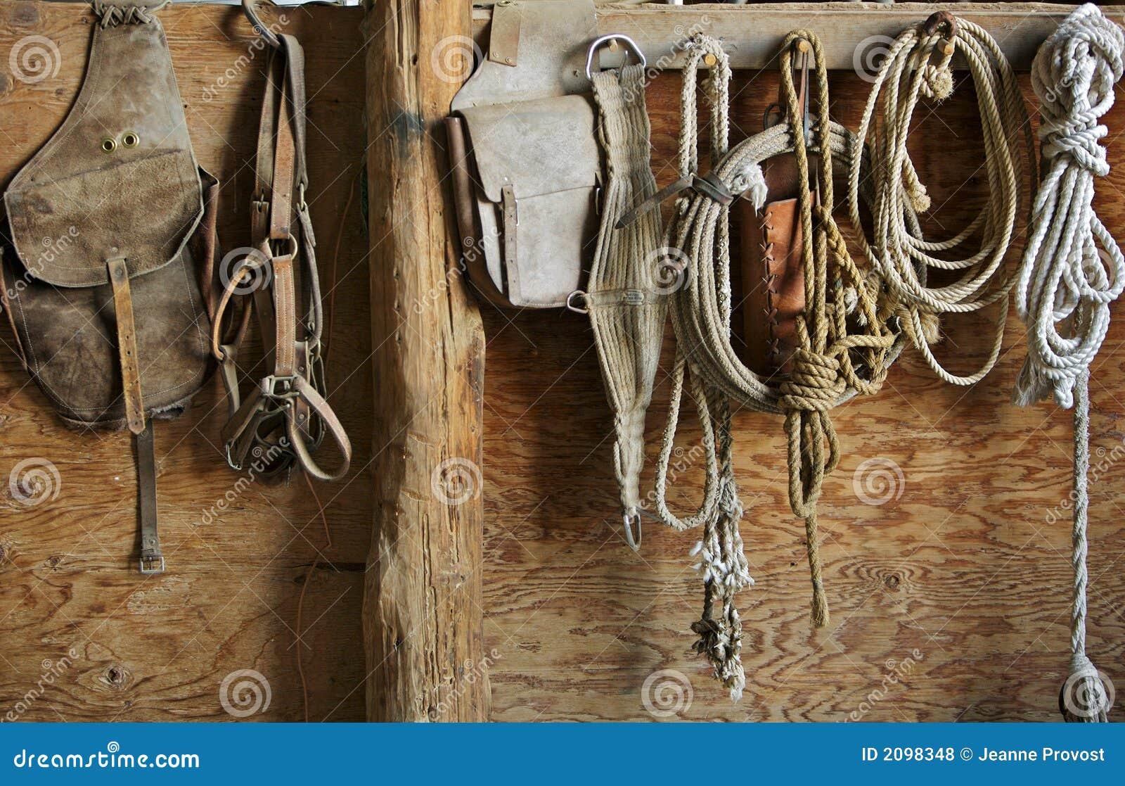 Koń sprzętu