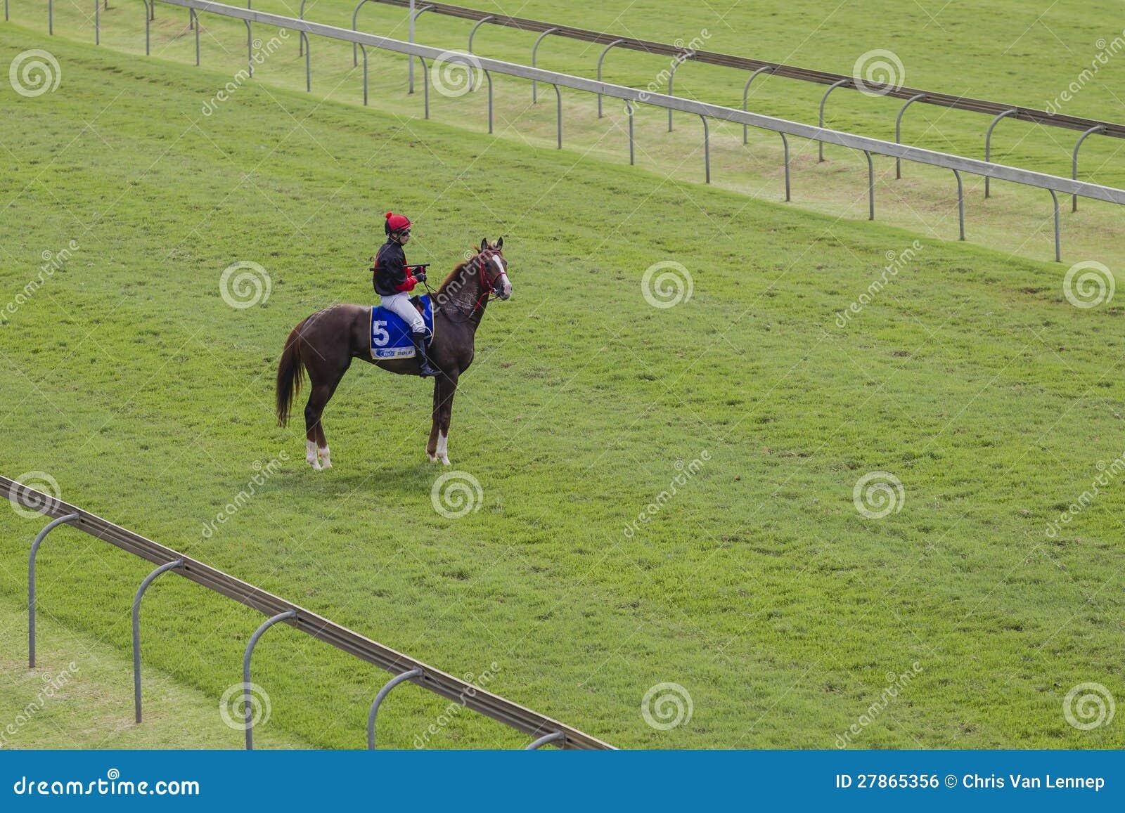 Końska Dżokeja Samotnie Rasa