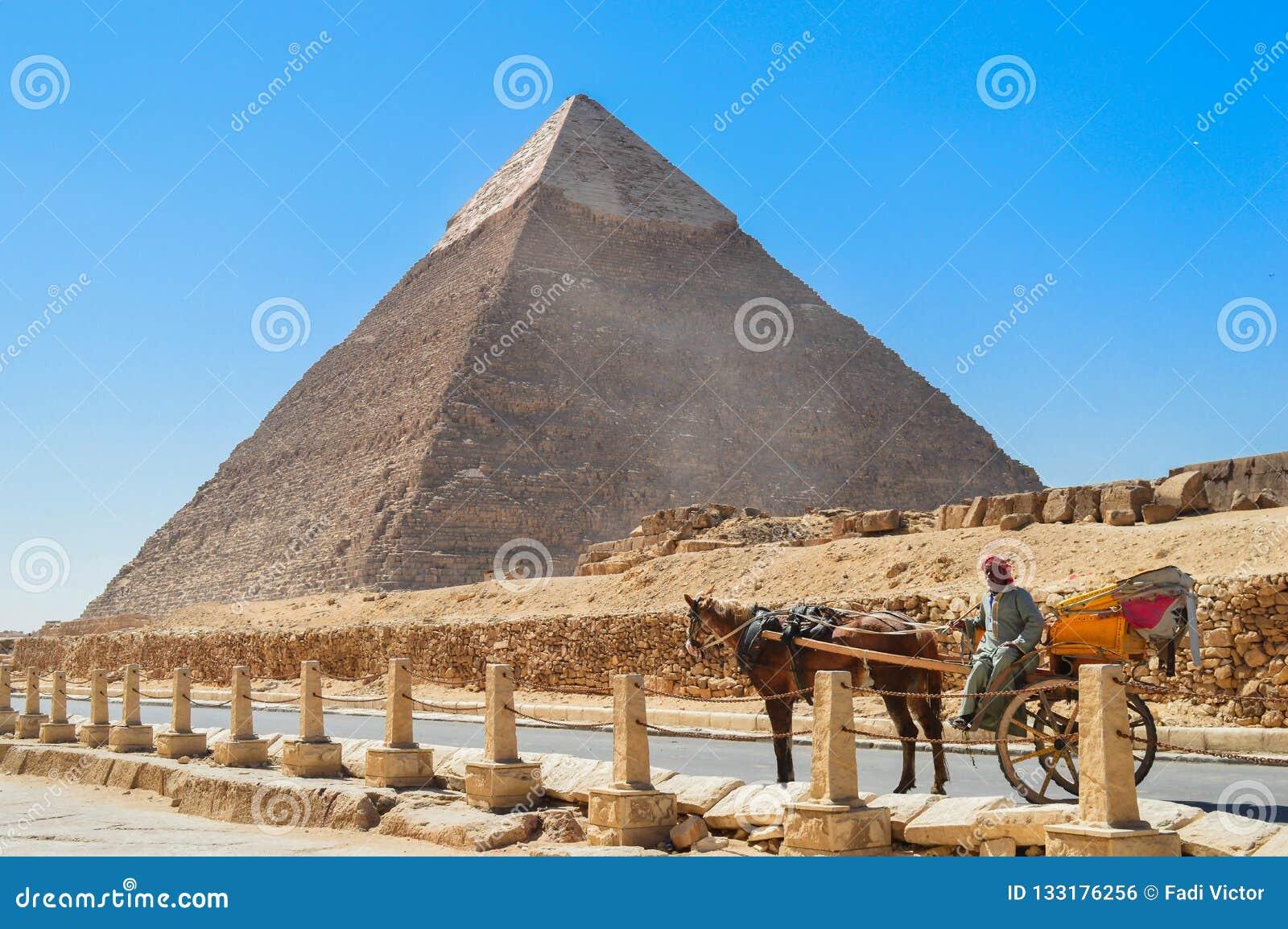 Koński furgon przy Giza ostrosłupami