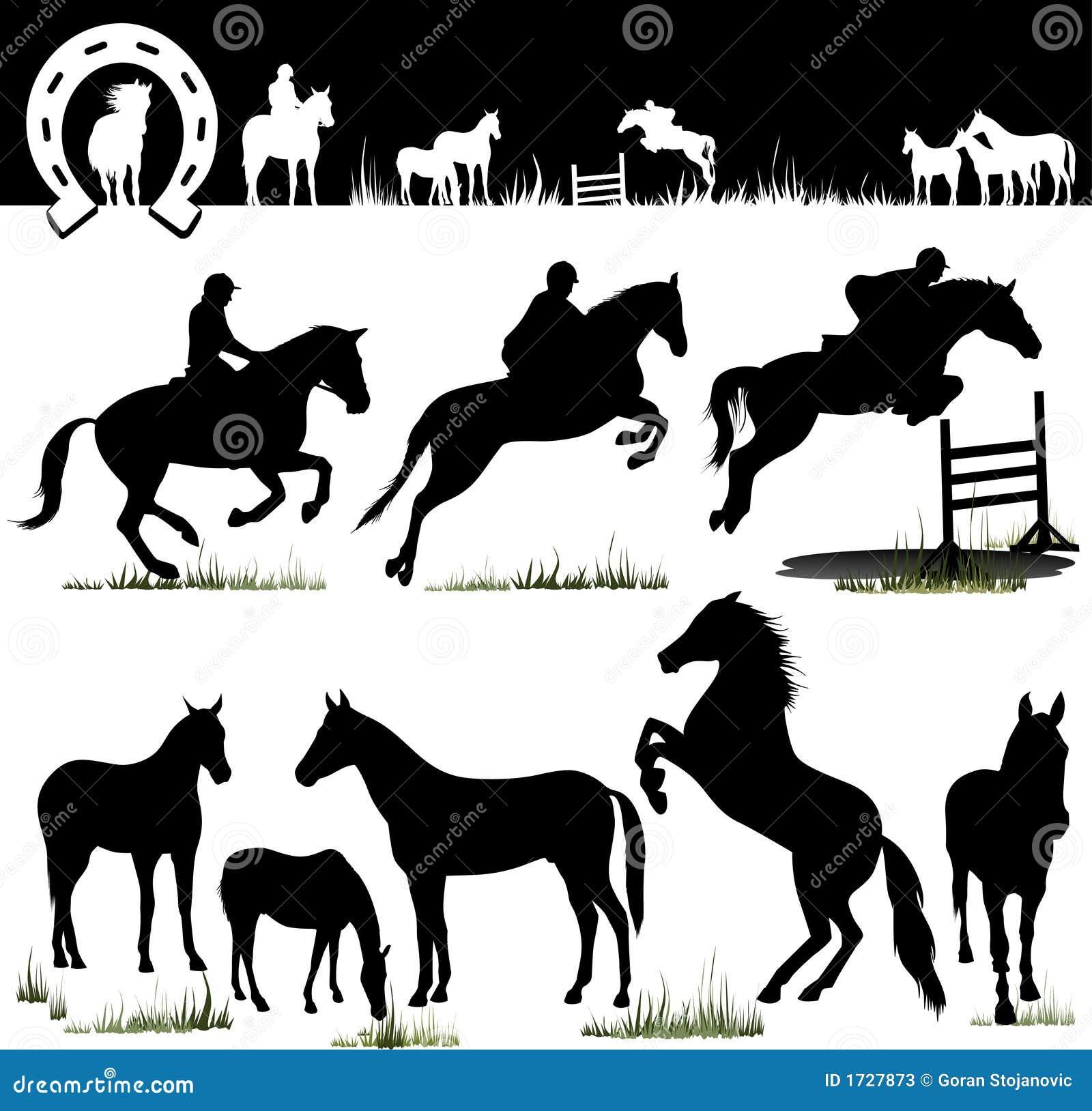 Końskie sylwetki wektorowe