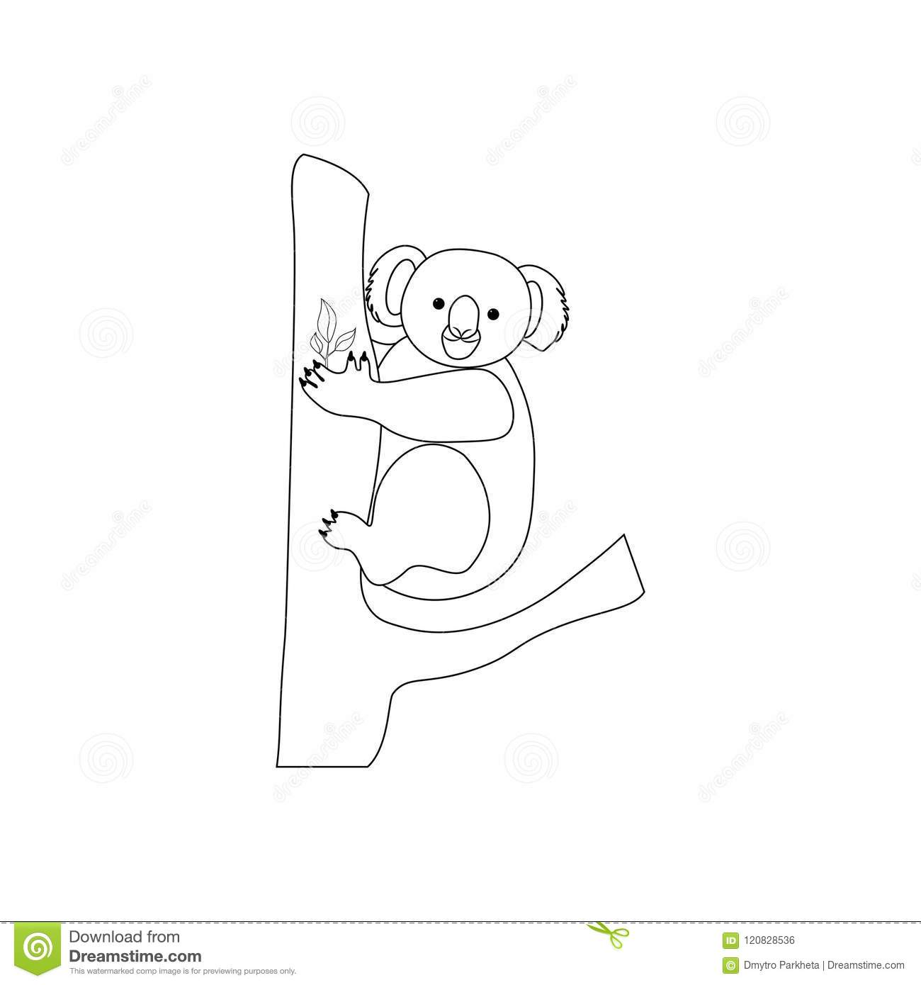 Koala bear coloring pages stock vector. Illustration of cartoon ...