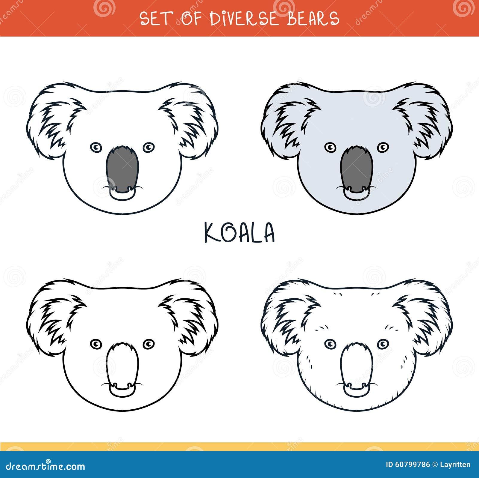 Koala Bear Set Face Heads Bear In Color Lines Stock Vector