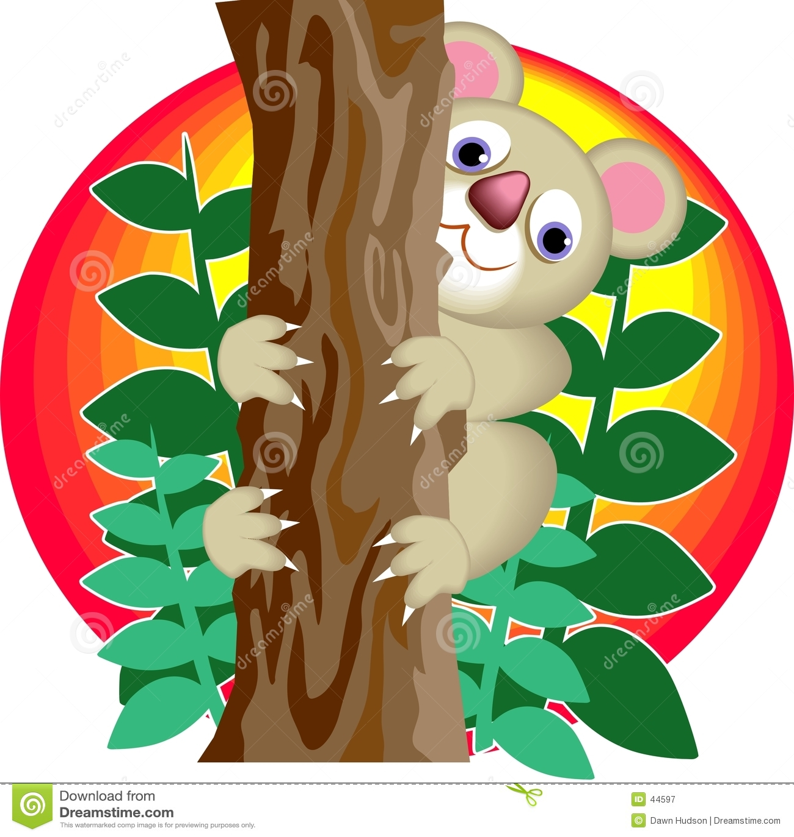 Koala niedźwiedzi