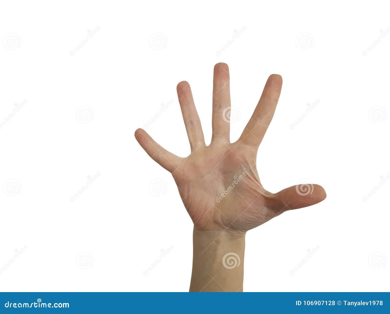 Kobiet ręki na biały tła gestykulować