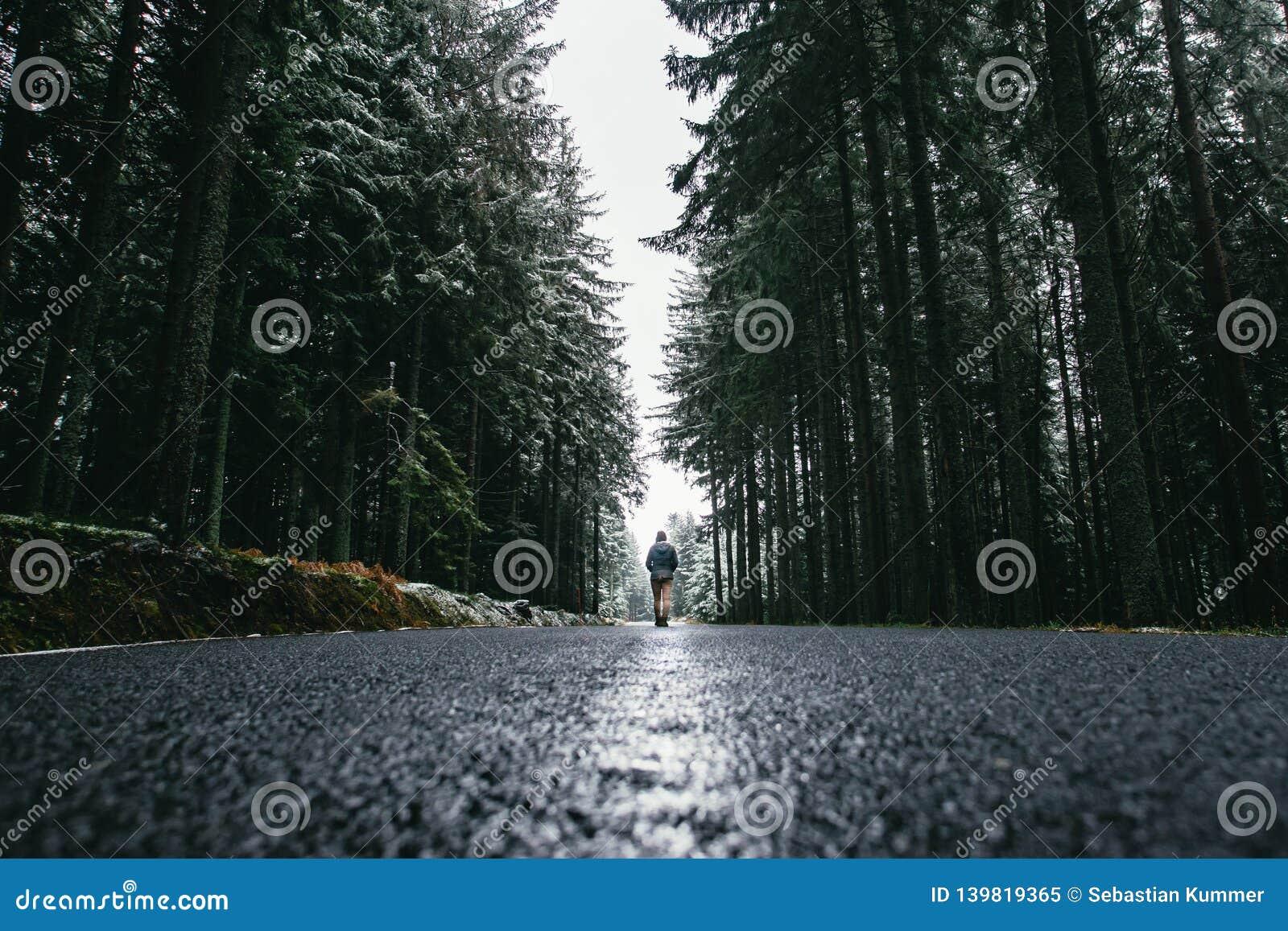 Kobieta chodzi przez lasu w wintertime Samotna kobieta iść w zimnym dniu