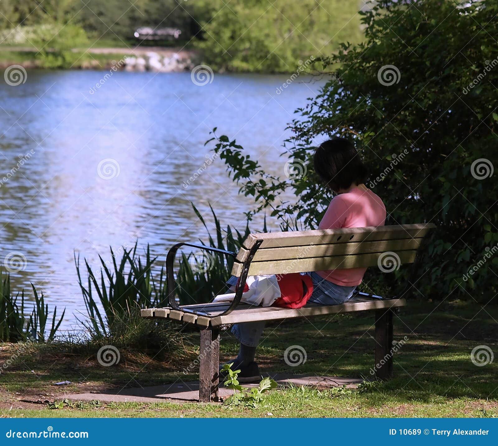 Kobieta czytelnicza ławki księgowa