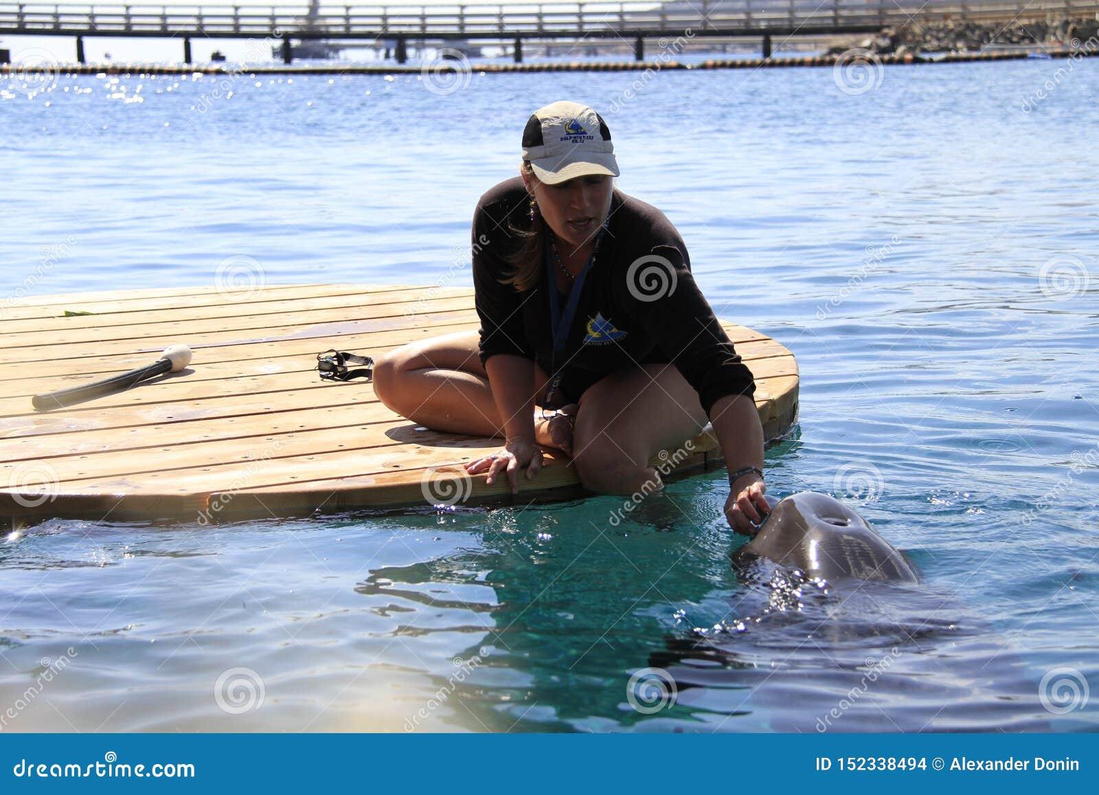 Kobieta i delfin w wodzie