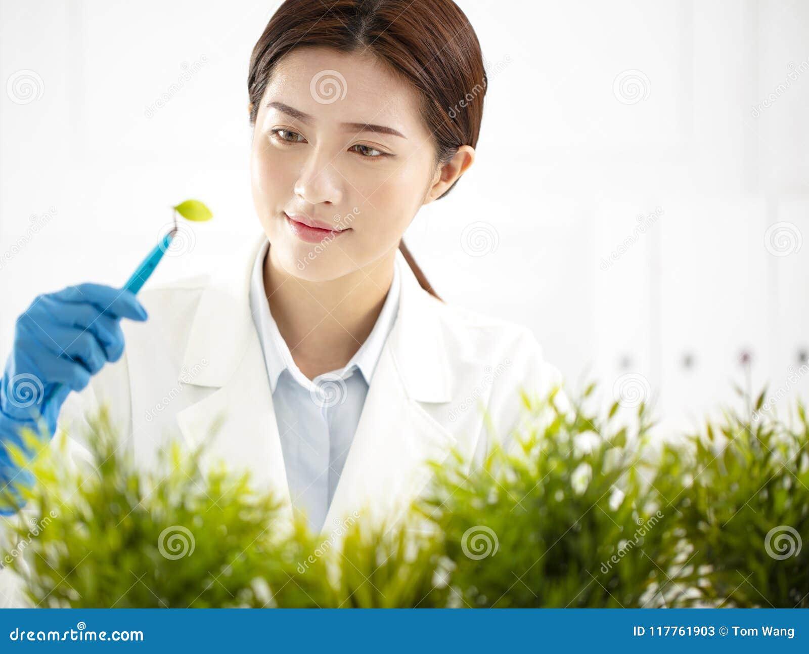 Kobieta naukowiec sprawdza rośliny