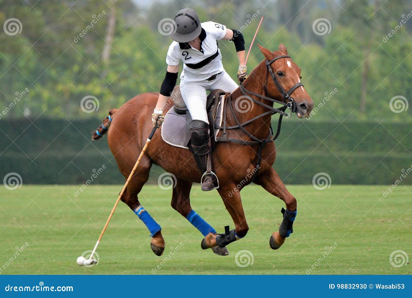 Kobieta polo koński gracz