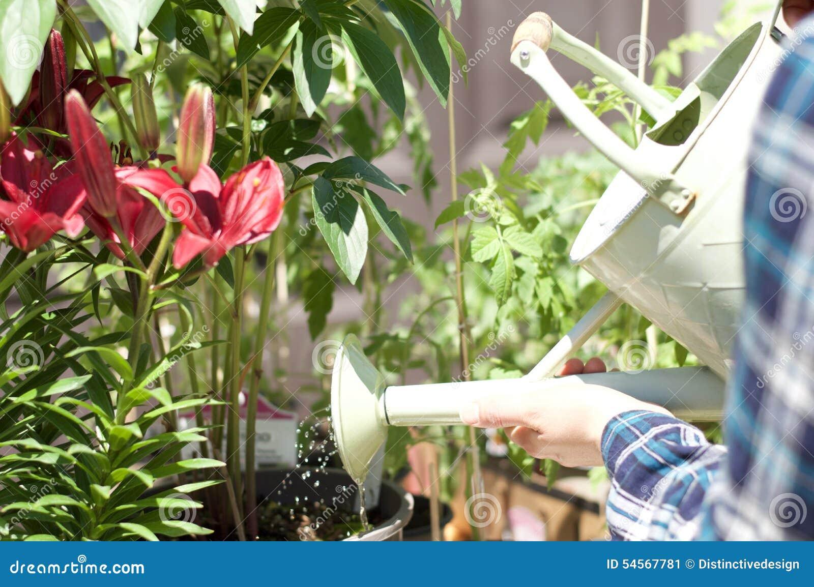 Kobieta pracuje w ogrodowym centrum