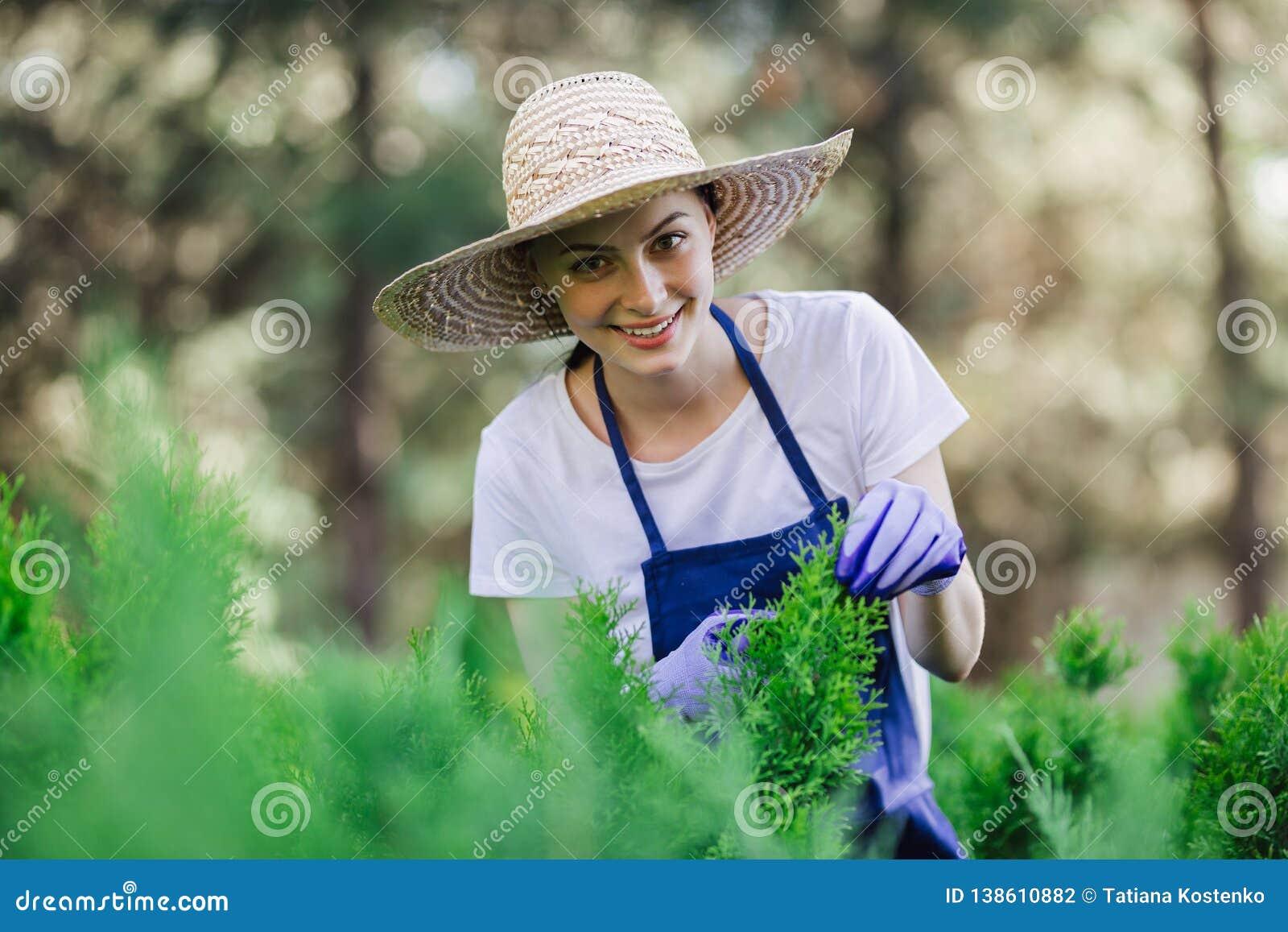 Kobieta używa ogrodnictwa narzędzie żyłować żywopłot, tnący krzaki z ogrodowymi strzyżeniami