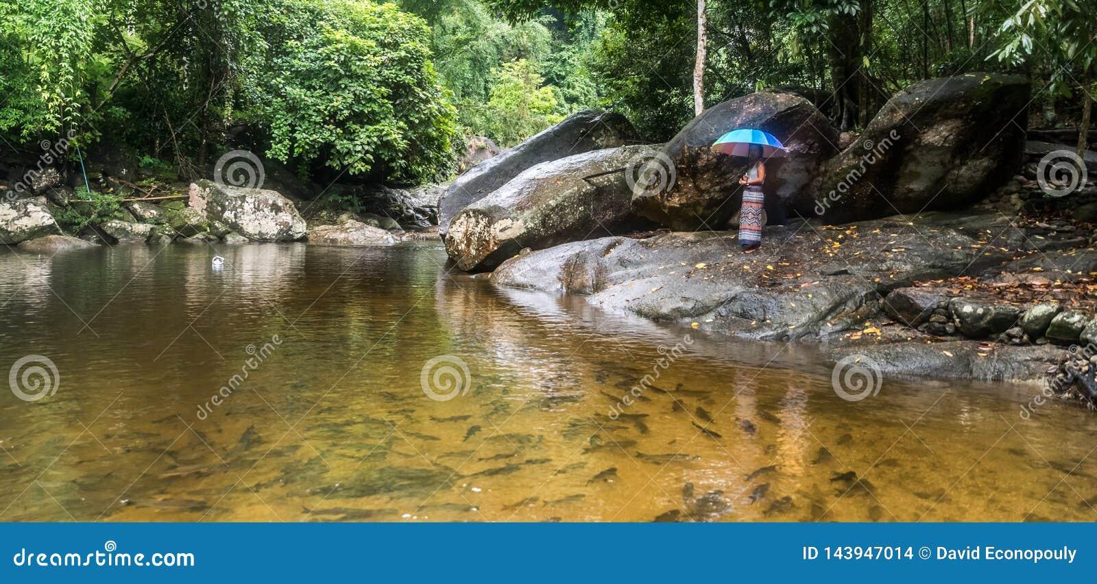 Kobieta w sarong pozycji na rzeki skale