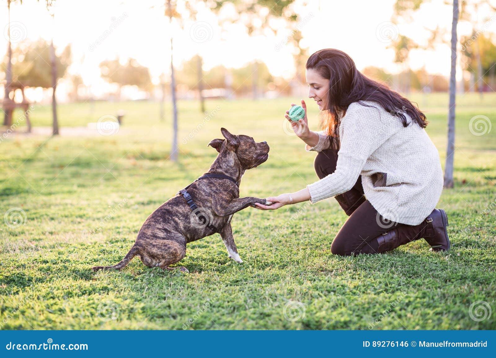Kobiety i psa chwiania łapa i ręka