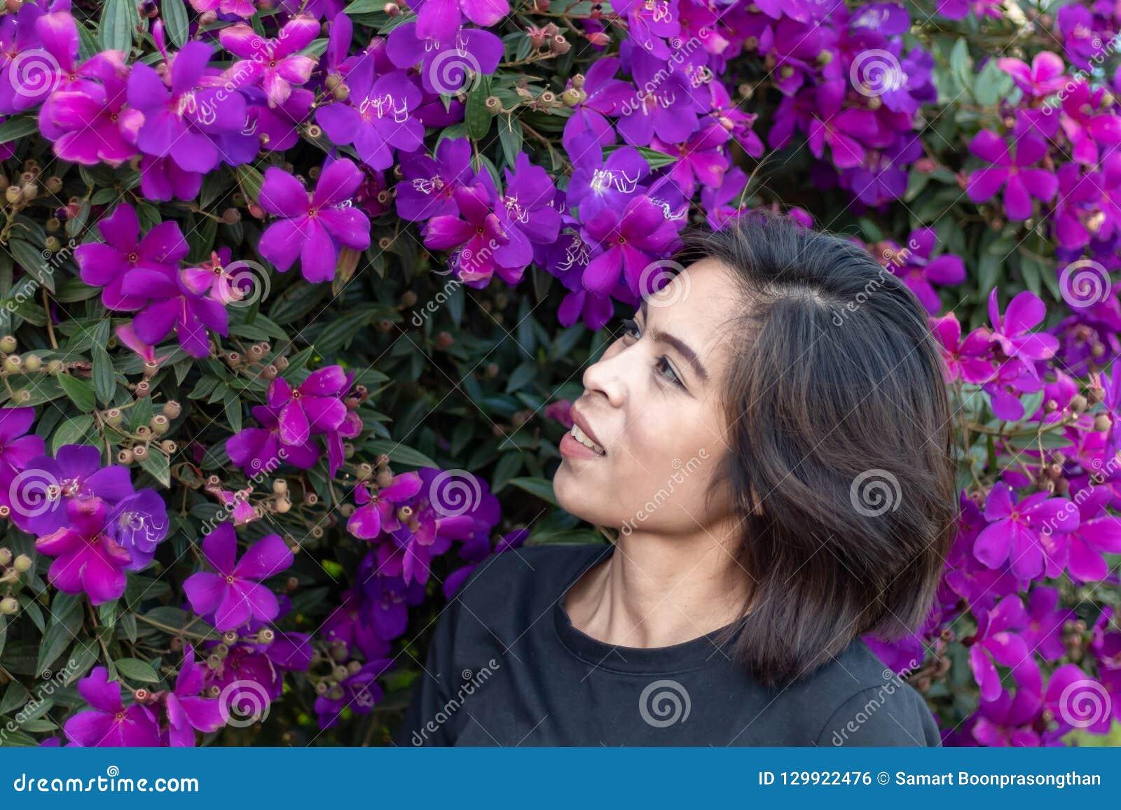 Kobiety i purpury kwitną lub Tibouchina granulosa w ogródzie