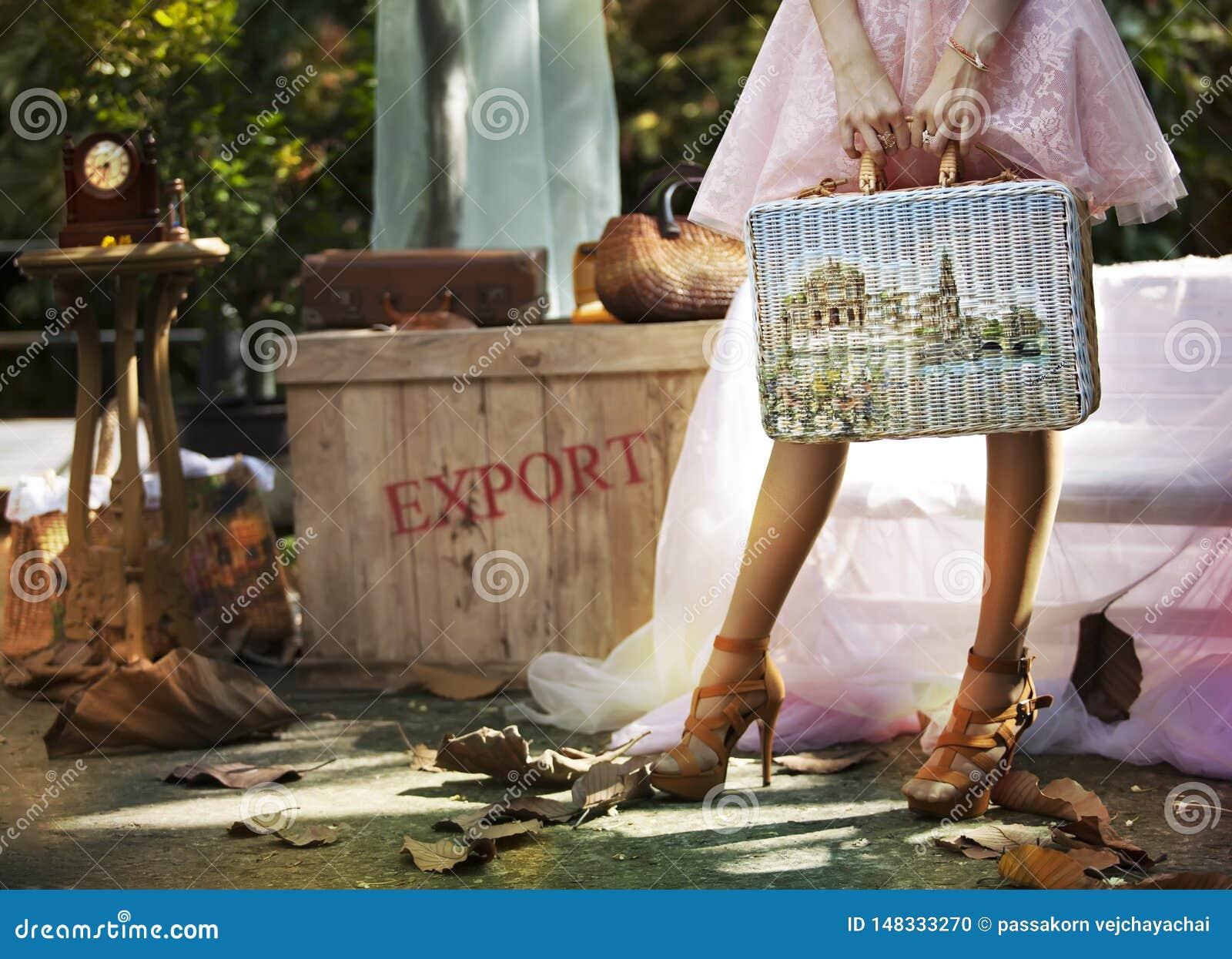Kobiety niesie bagaż podróżować