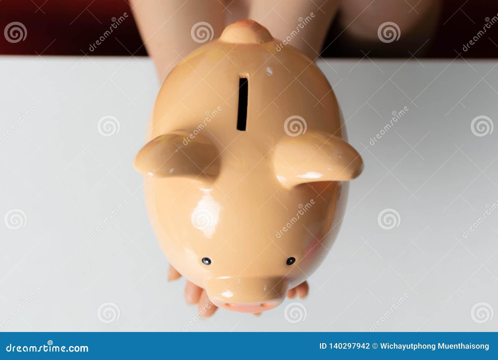 Kobiety ręki chwyta prosiątka bank