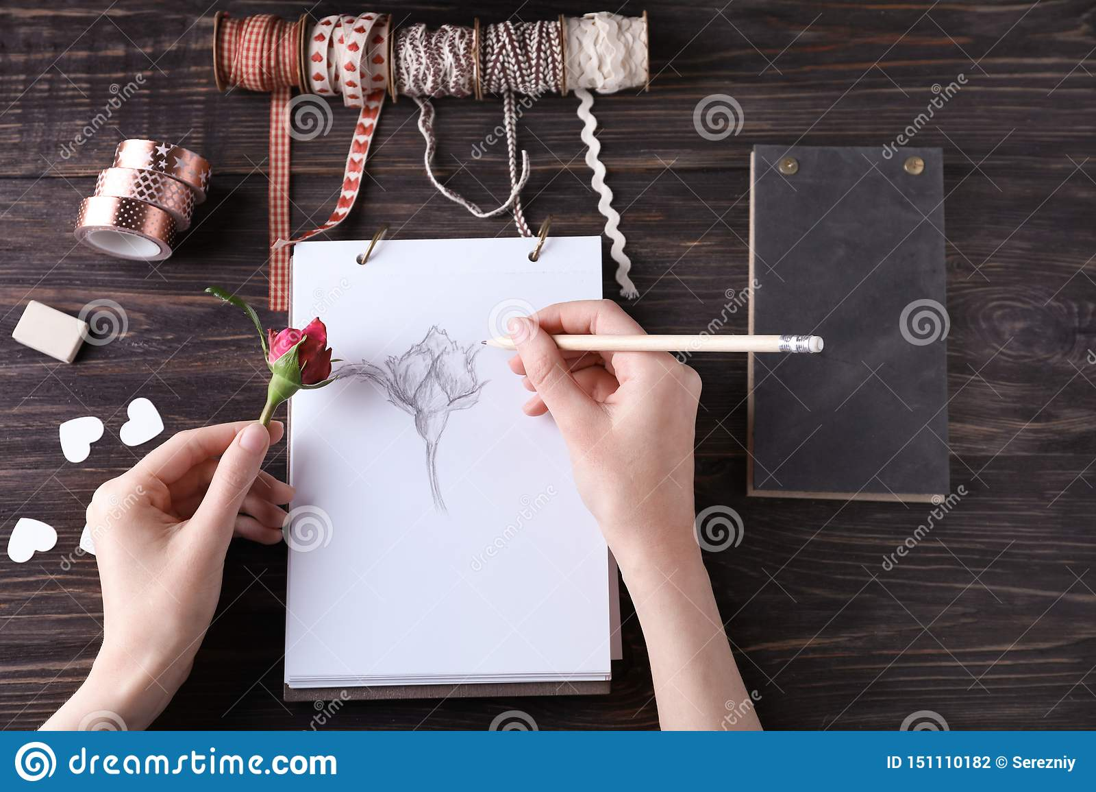 Kobiety rysować piękny wzrastał na nakreślenie ochraniaczu
