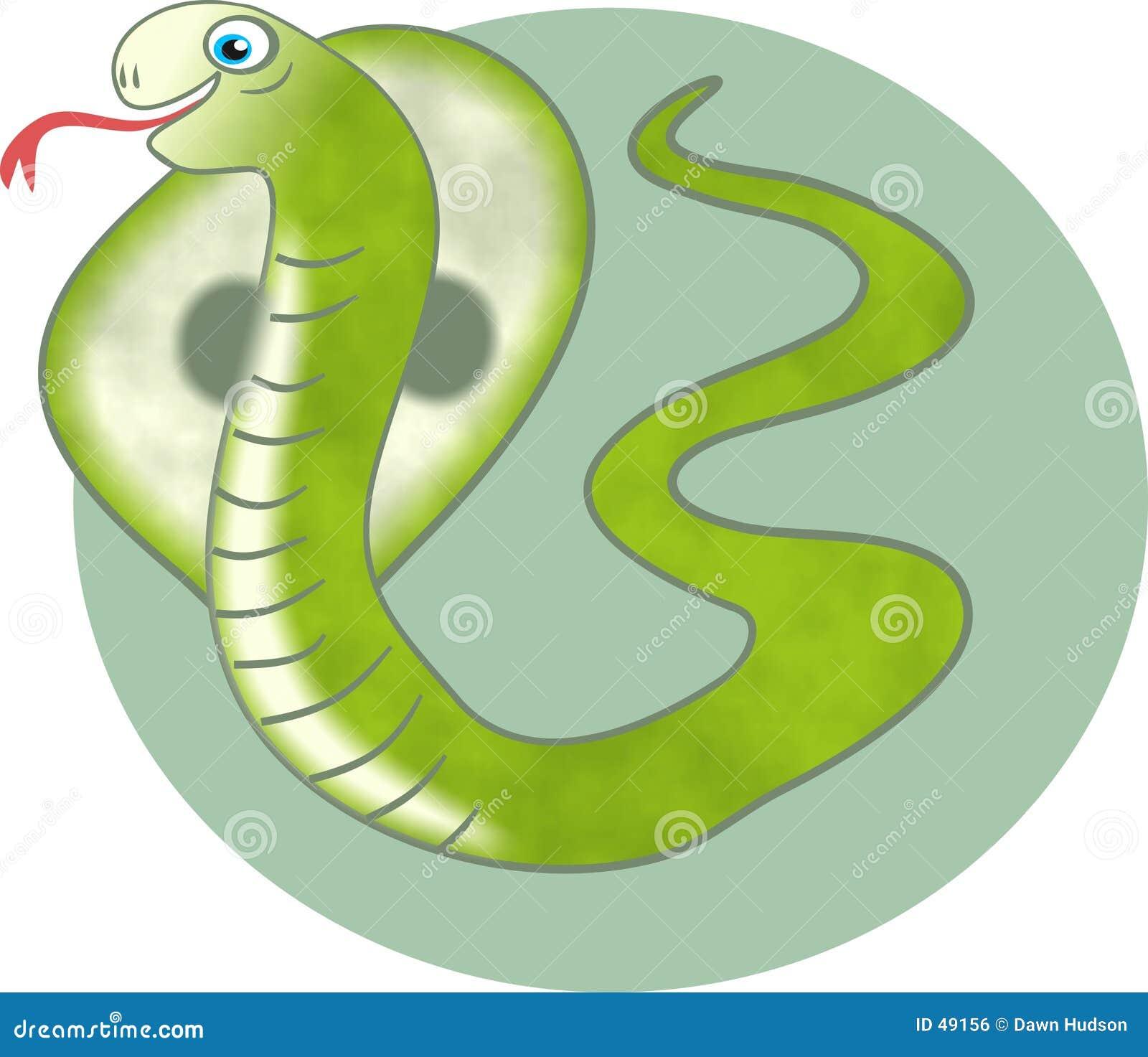 Kobra-Schlange