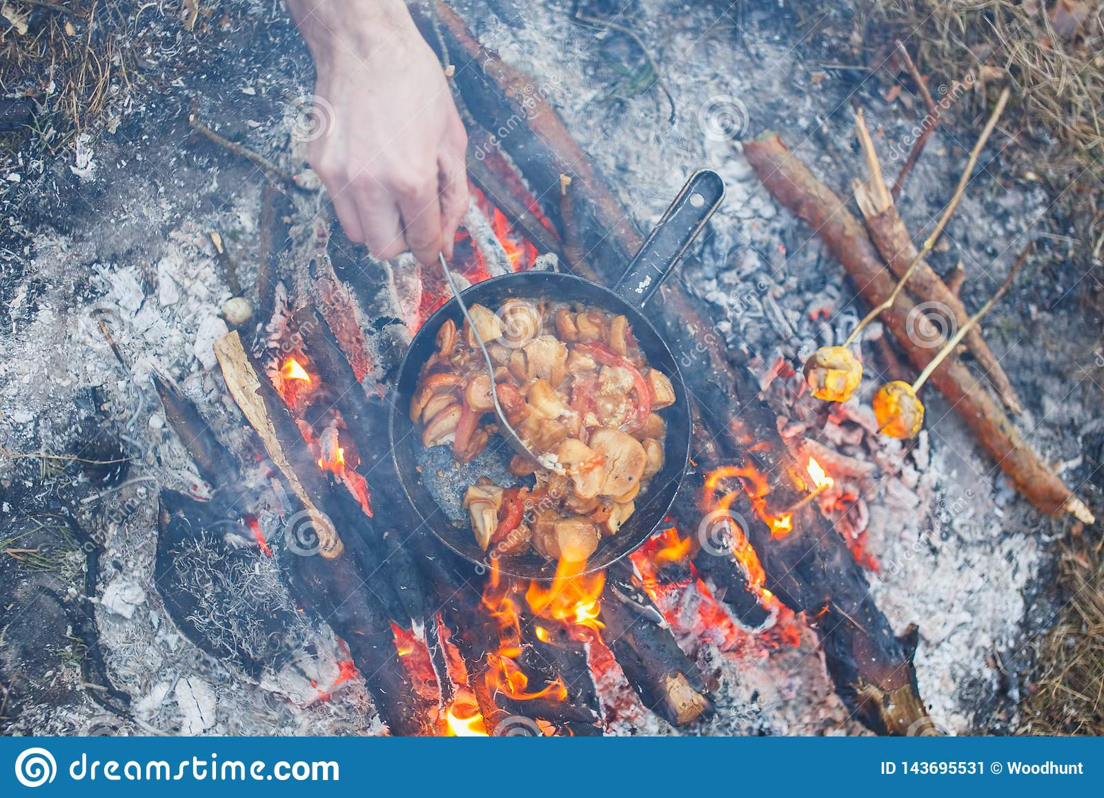 Koch bereitet porcini Pilze mit Tomaten in einer Wanne auf einem Wald des Feuers im Frühjahr zu