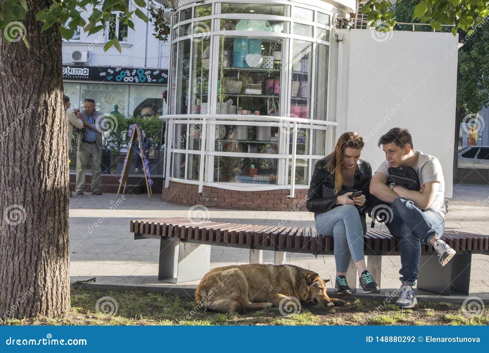 Kochaj?ca para siedzi na ?awce Rewolucjonistki psi lying on the beach przy ich ciekami