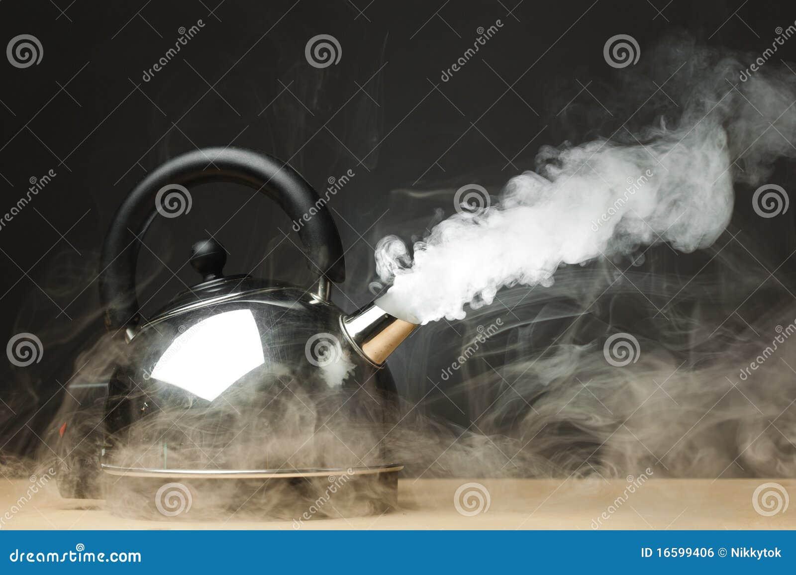 Kochender Kessel stockfoto. Bild von metall, nichtrostend - 16599406