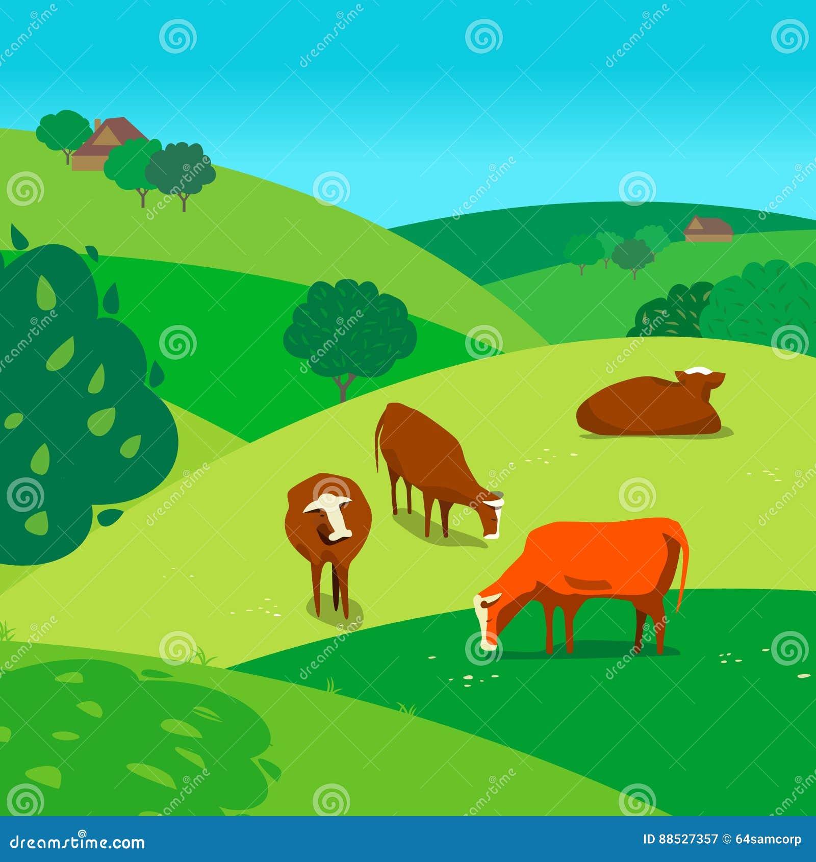 Koeien op weide