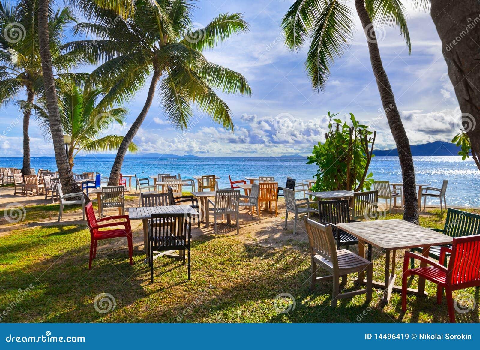 Koffie en palmen op een tropisch strand