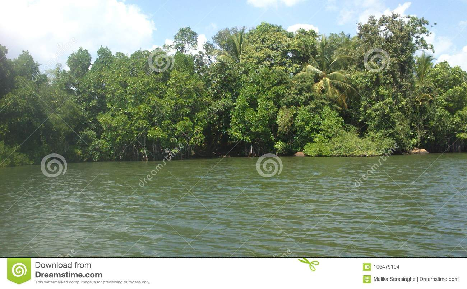 Koggala jezioro w Sr Llanka