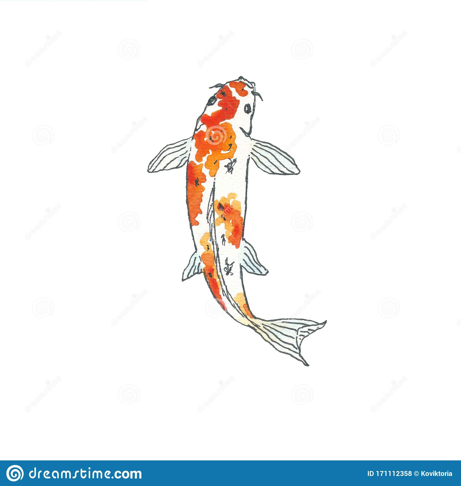 - Koi Fish. Hand Drawing Sketch. Black Outline On White Background