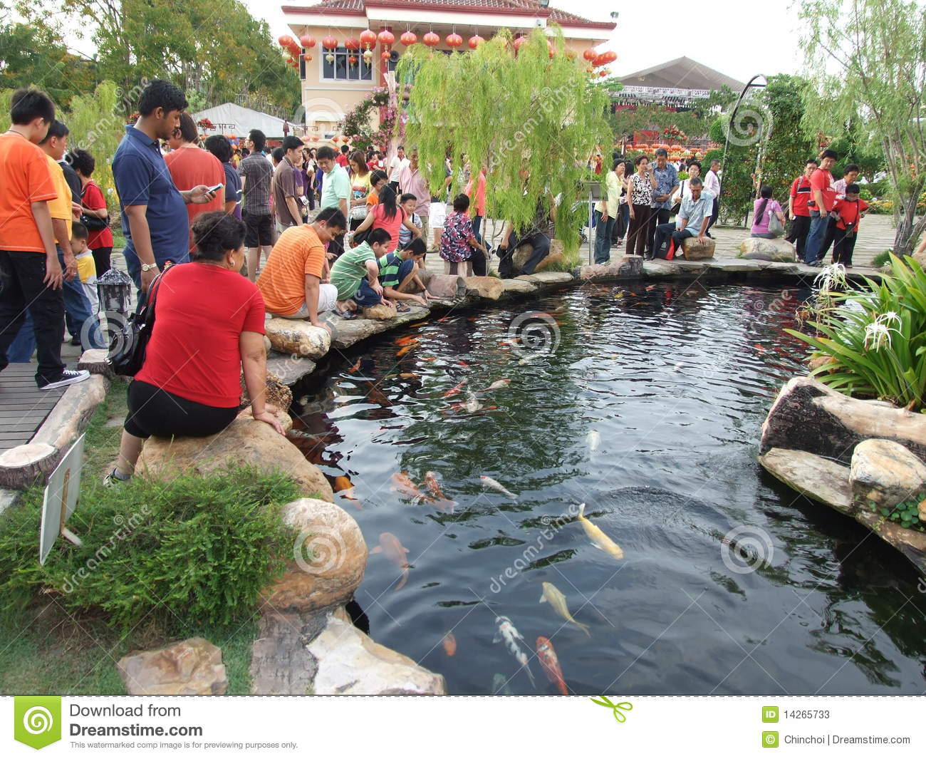 Koi fish pond editorial stock photo image 14265733 for Koi fish pond design in malaysia