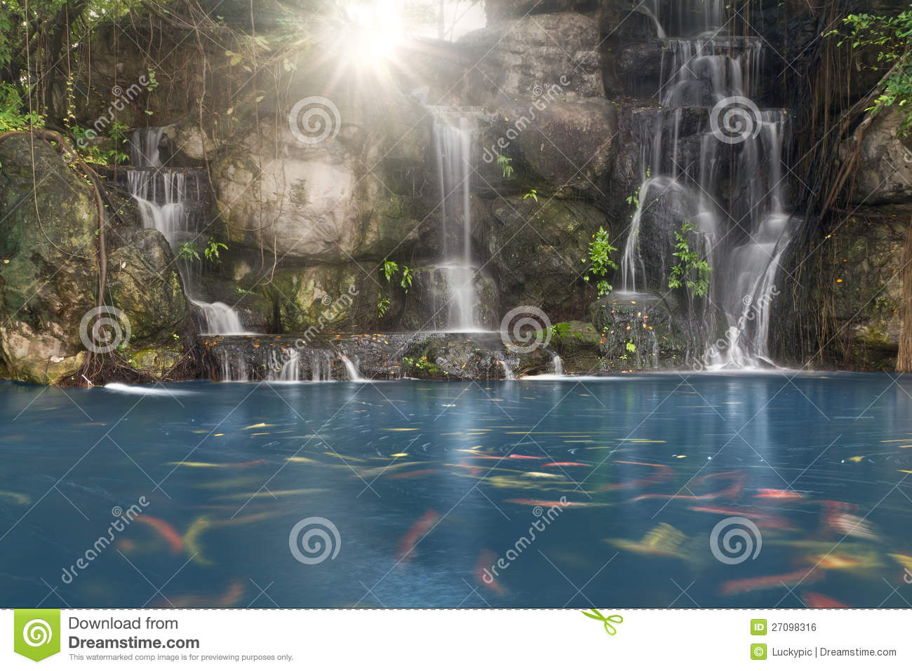 koi fish in pond with a waterfall royalty free stock image. Black Bedroom Furniture Sets. Home Design Ideas