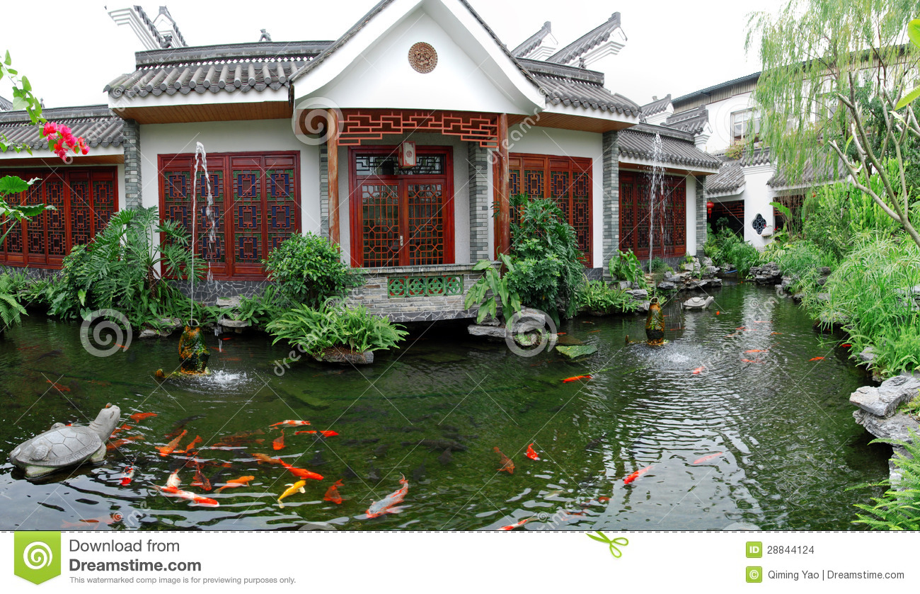 Koi pond garden stock photo image of beautiful animals for Koi pond in house