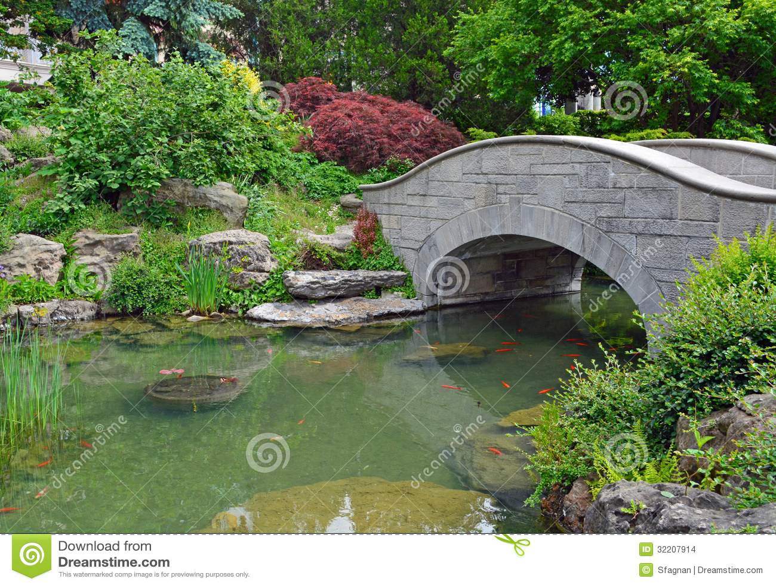 Koi pond stock photo image of pond spring summer for Koi pond quezon city