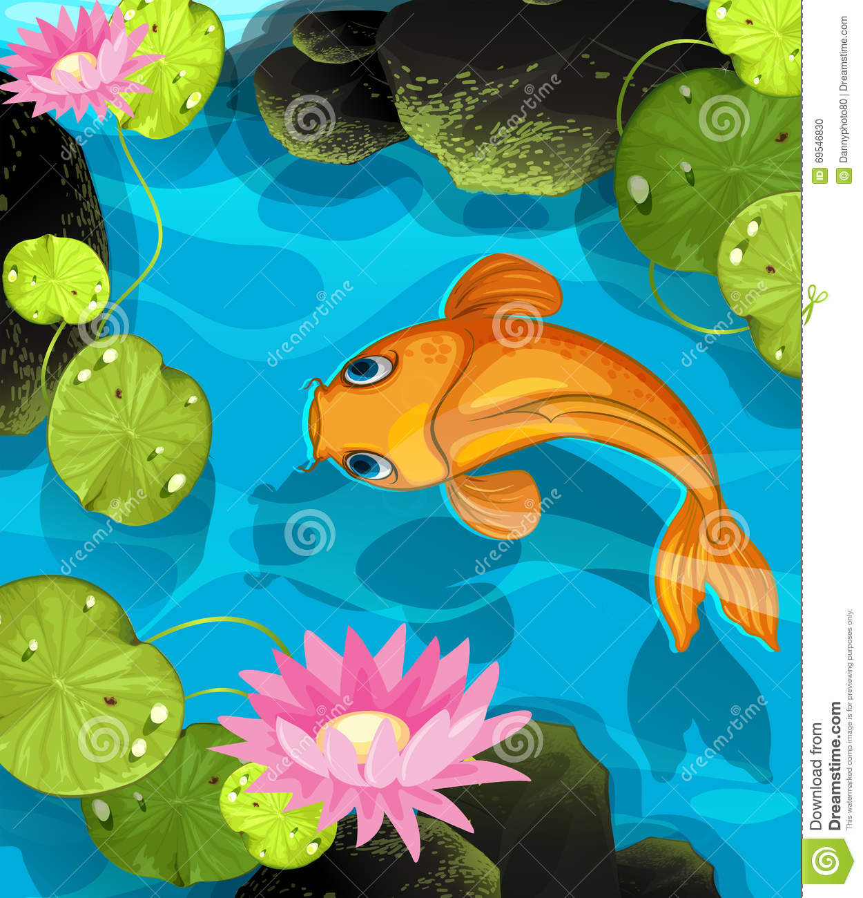 Koi swimming in the lotus pool stock vector image 69546830 for Koi swimming pool