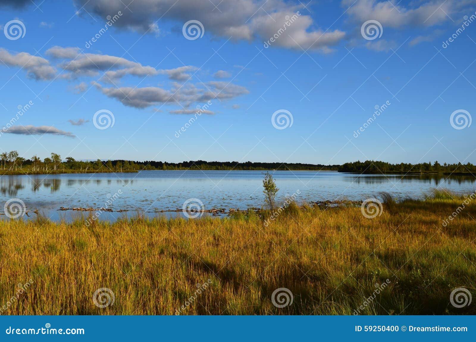 Koigi bagno w Saaremaa, Estonia