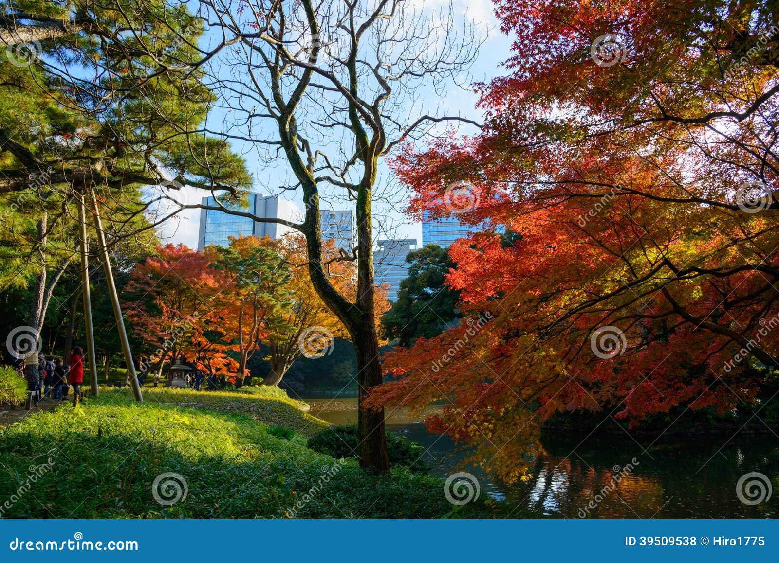 Koishikawa Korakuen Garden in Autumn in Tokyo