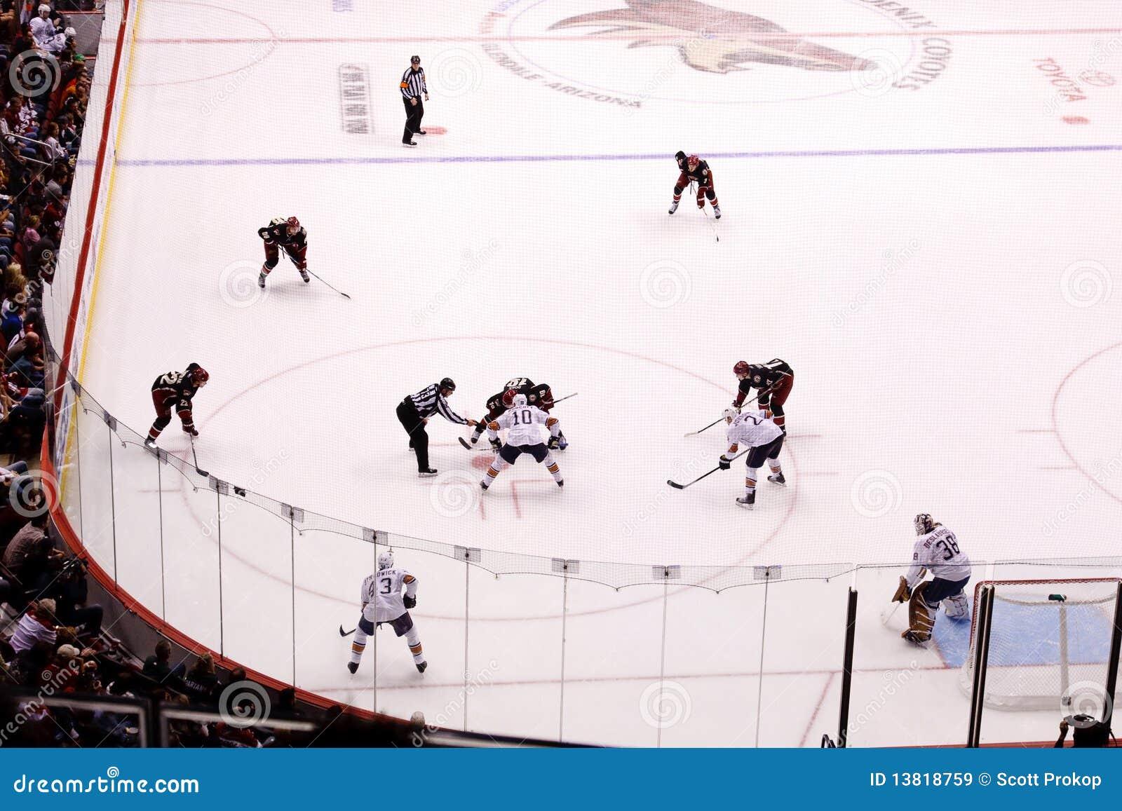 Kojotów Edmonton hokejowy nhl olejarzów feniks