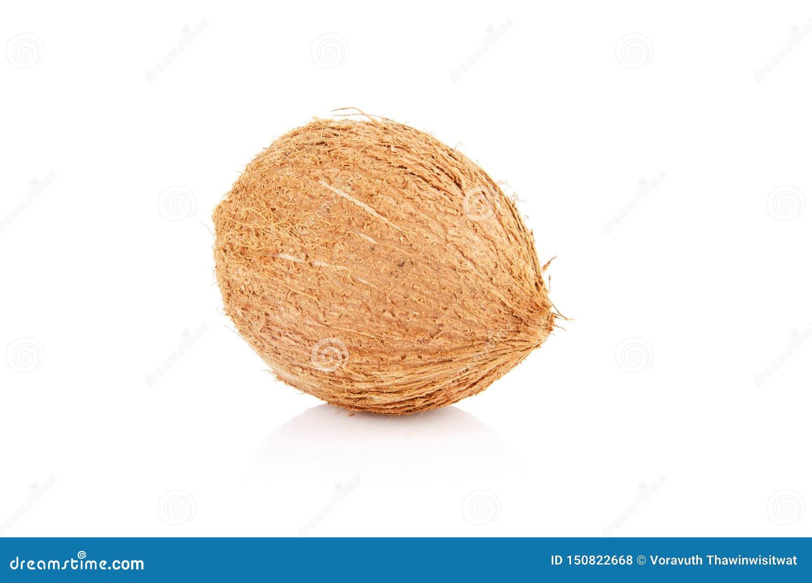 Kokosn?sse lokalisiert auf wei?em Hintergrund