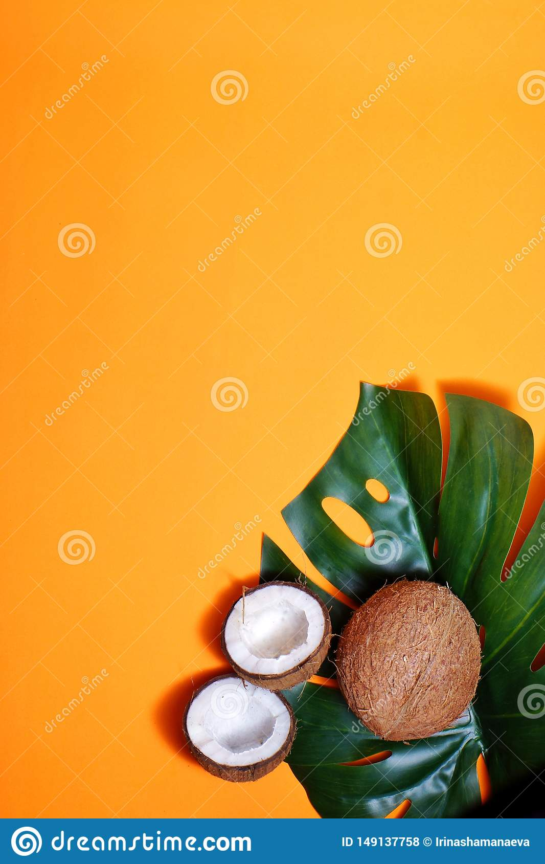 Kokosn?tter och tropiskt blad av monsterav?xten med p? orange bakgrund Plant lager, b?sta sikt, kopieringsutrymme laga mat som ?r