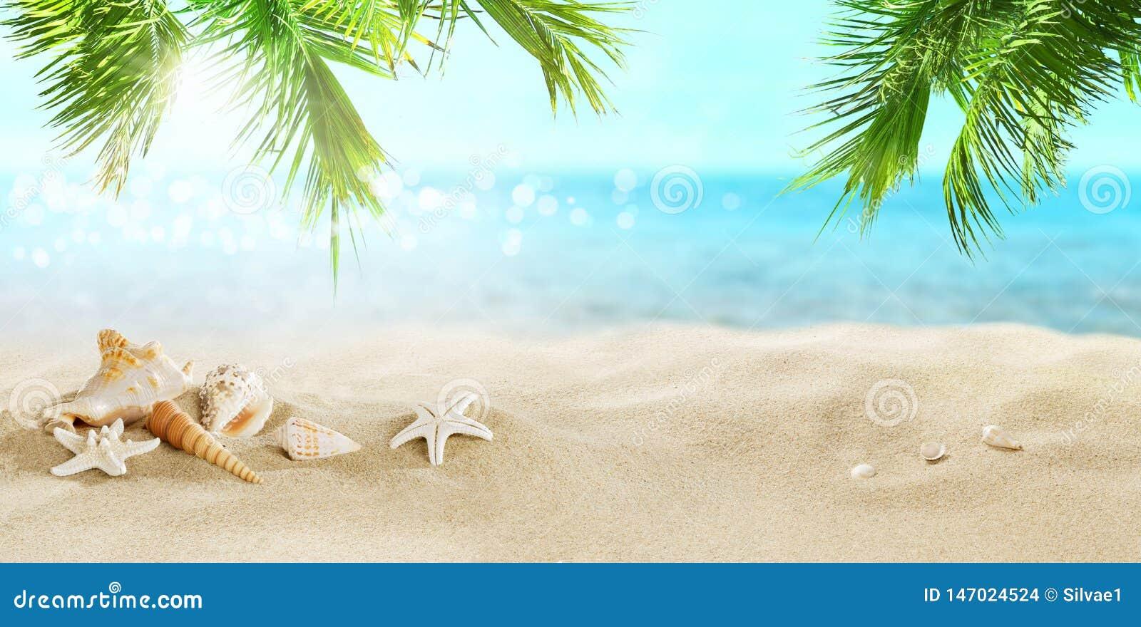 Kokosowe palmy na tropikalnej pla?y