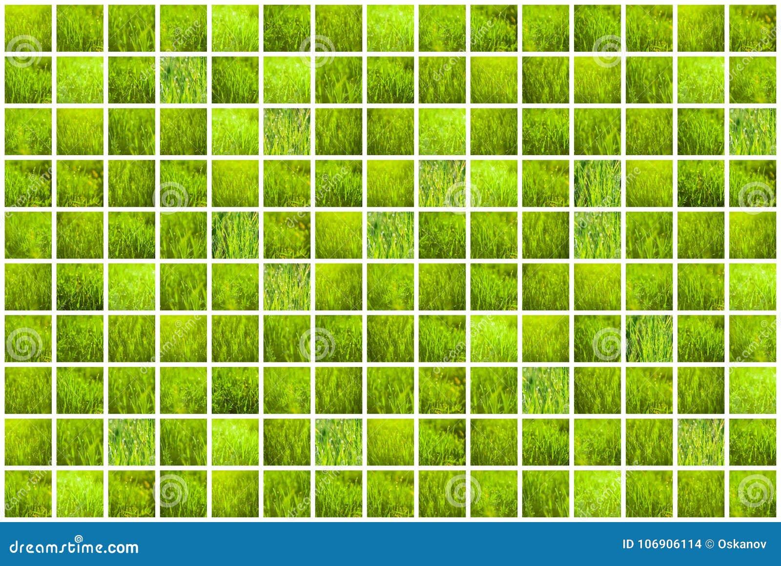 Kolaż zielona trawa Wiosen tła