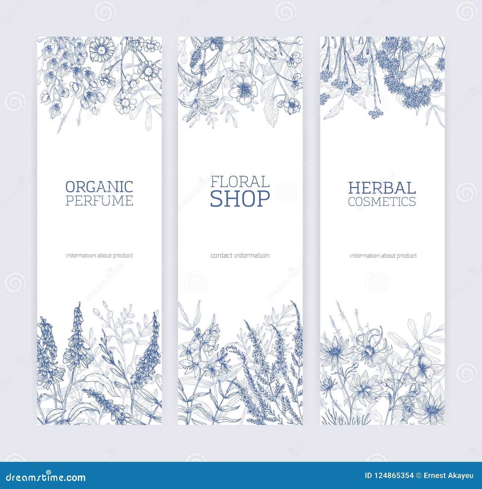 Kolekcja pionowo sztandary dekorujący z dzikimi kwiatami i kwiatonośni łąkowi ziele wręczamy patroszonego z konturowymi liniami d