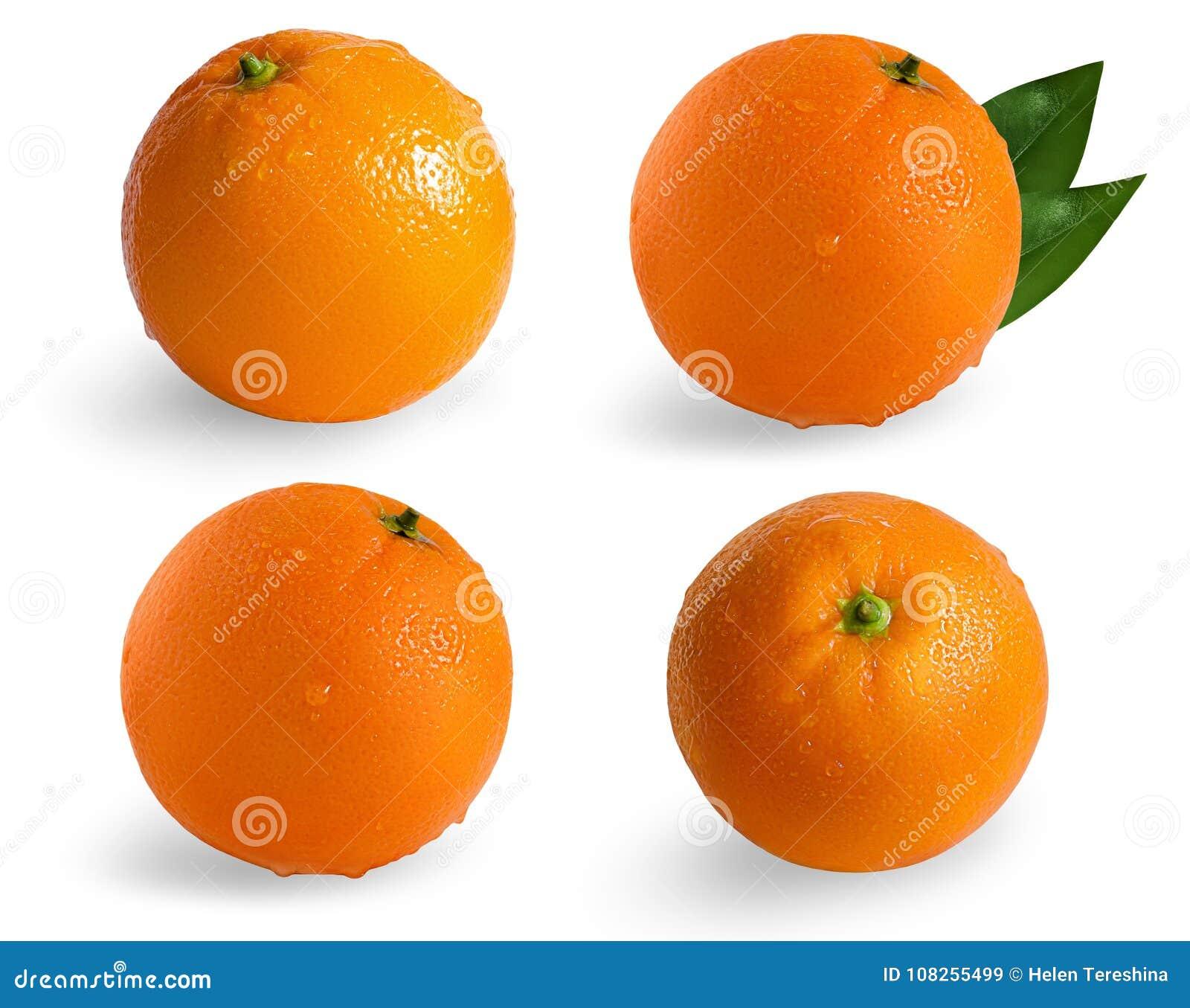 Kolekcja pomarańcze odizolowywać na białym tle Mokra pomarańcze odizolowywająca na białym tle